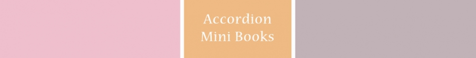 Accordion Mini Books NS