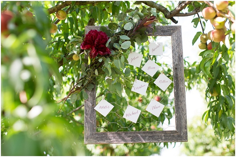 eastern-shore-maryland-wedding-photography-peach-orchard-photo_0001