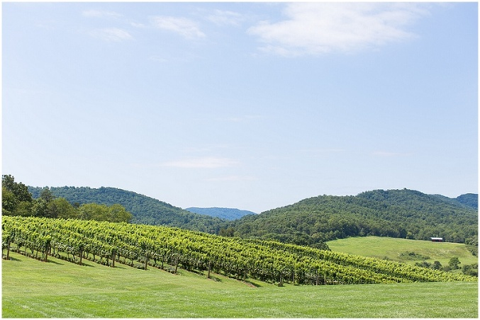 charlottesville-virginia-winery-tour-photography-photo_0001